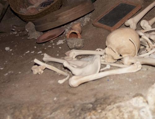 Wenn Knochen reden könnten…