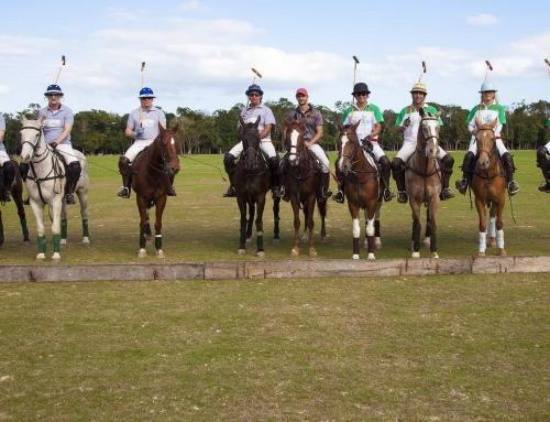 Mexico Polo Experience