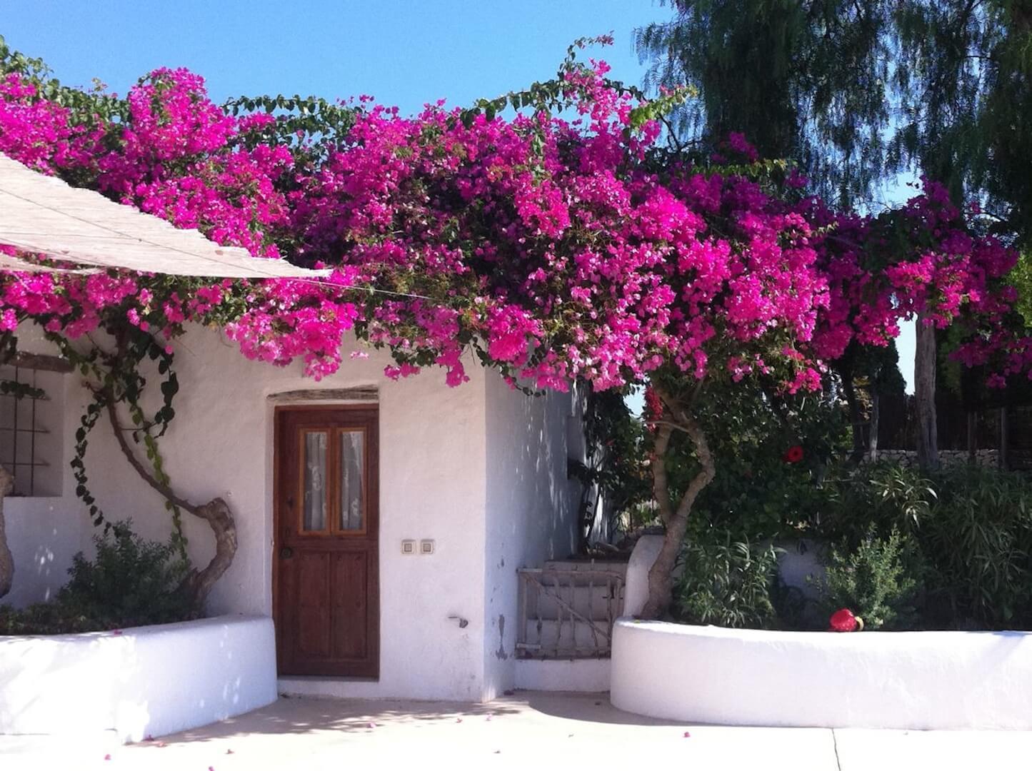 Alquiler casa de campo la silvana en ibiza ibiza style for Ibiza classic house